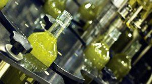 فروش روغن زیتون صنعتی